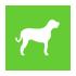 Chewable Calcium for PET